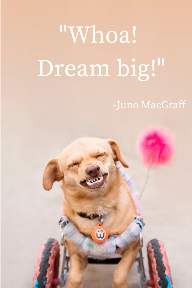 "Majestic Monday Quote ""Whoa! Dream Big!"" - Juno MacGraff"