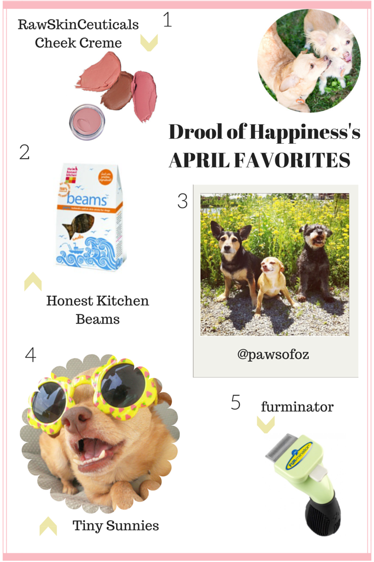 Monthly Favorites April 2015.png