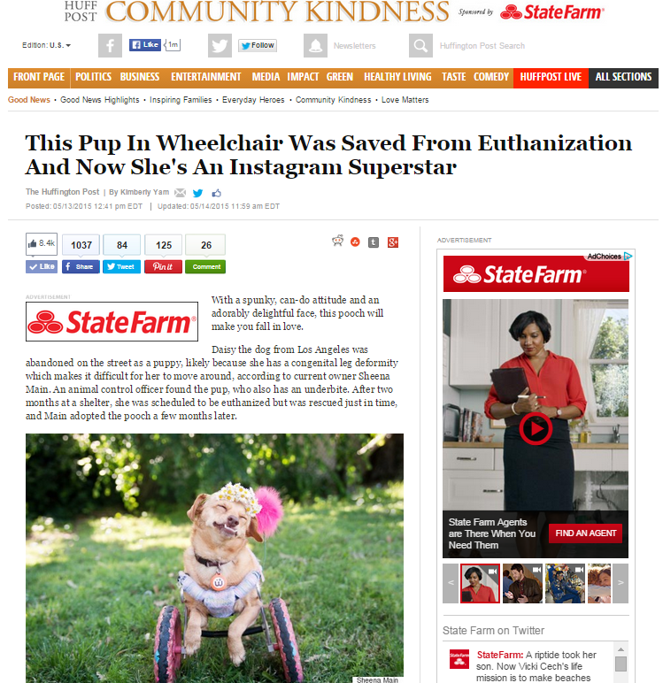 Huffington Post featured Daisy Underbite, a dog in a wheel cart and underbite.