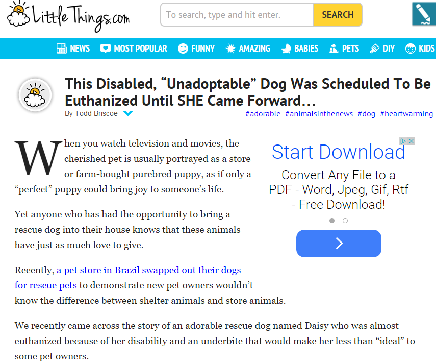 Littlethings.com featured Daisy Underbite's story about her dog wheel cart and disabilities.