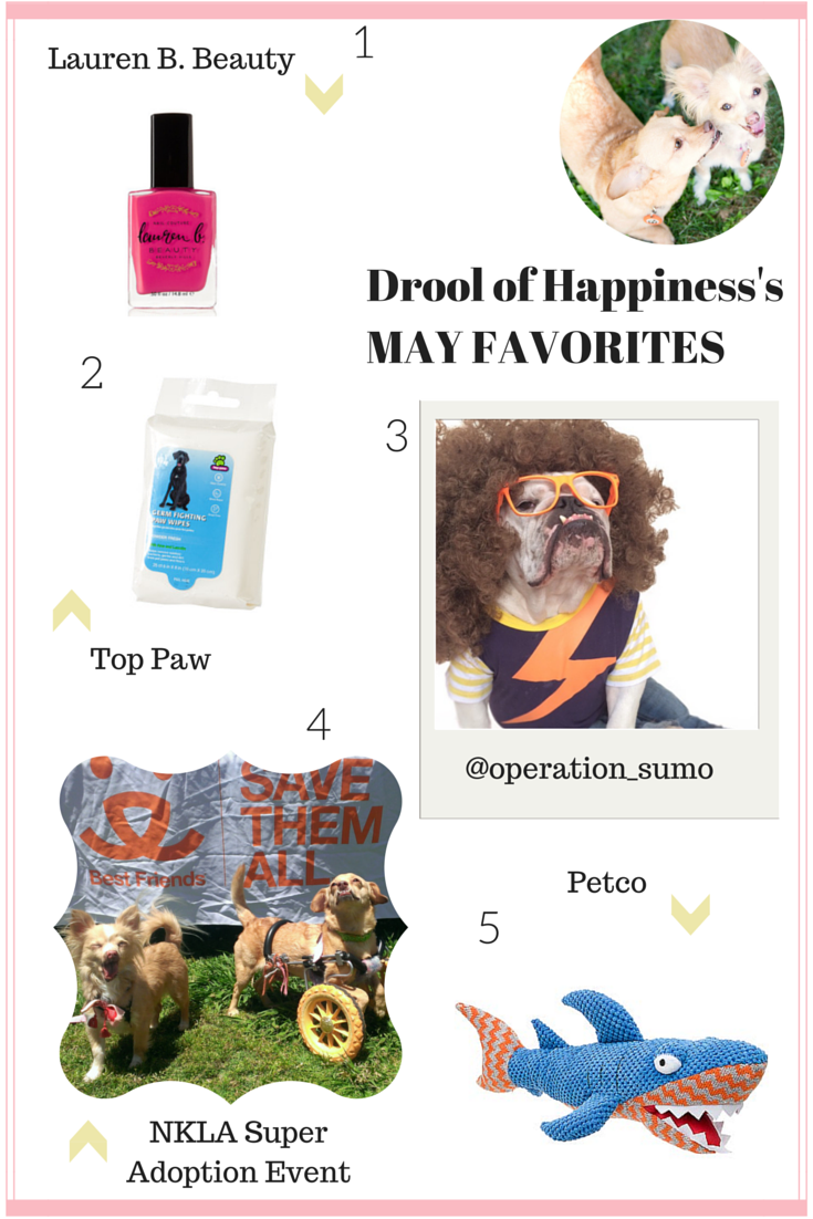 Drool of Happiness's May Favorites 2015