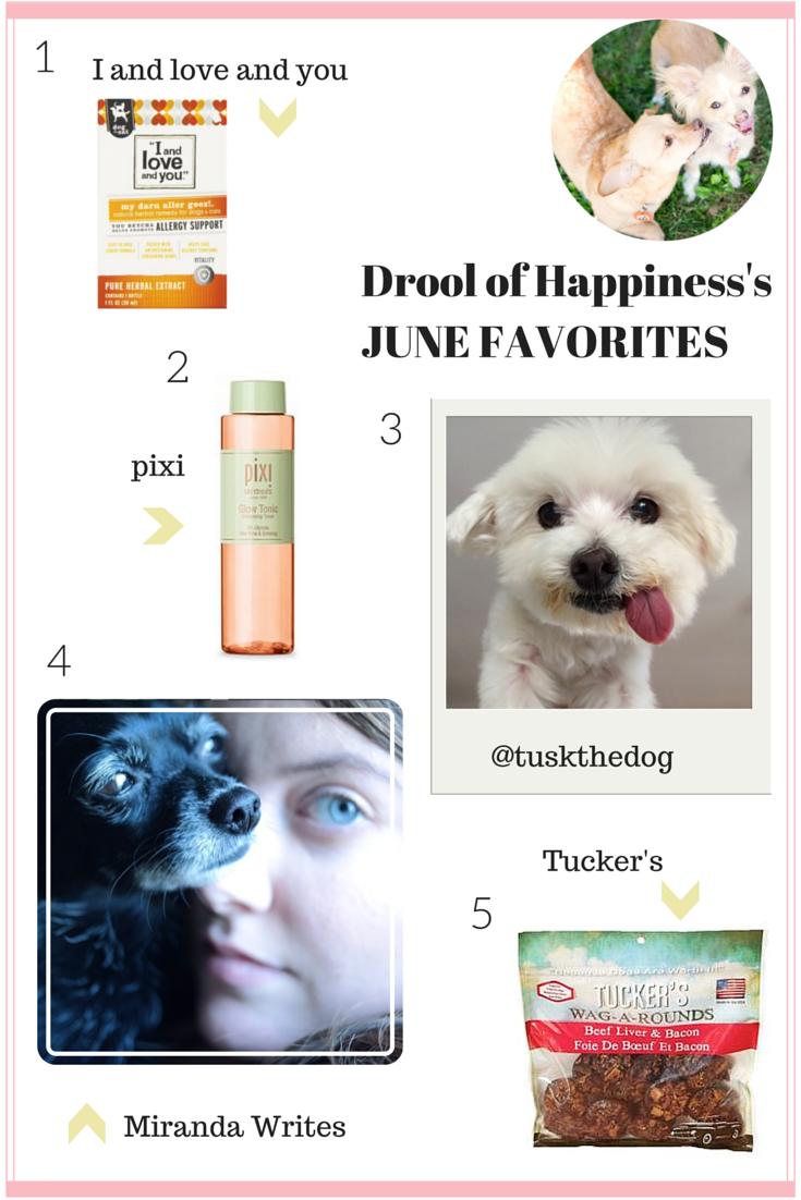 Drool of Happiness's June Favorites