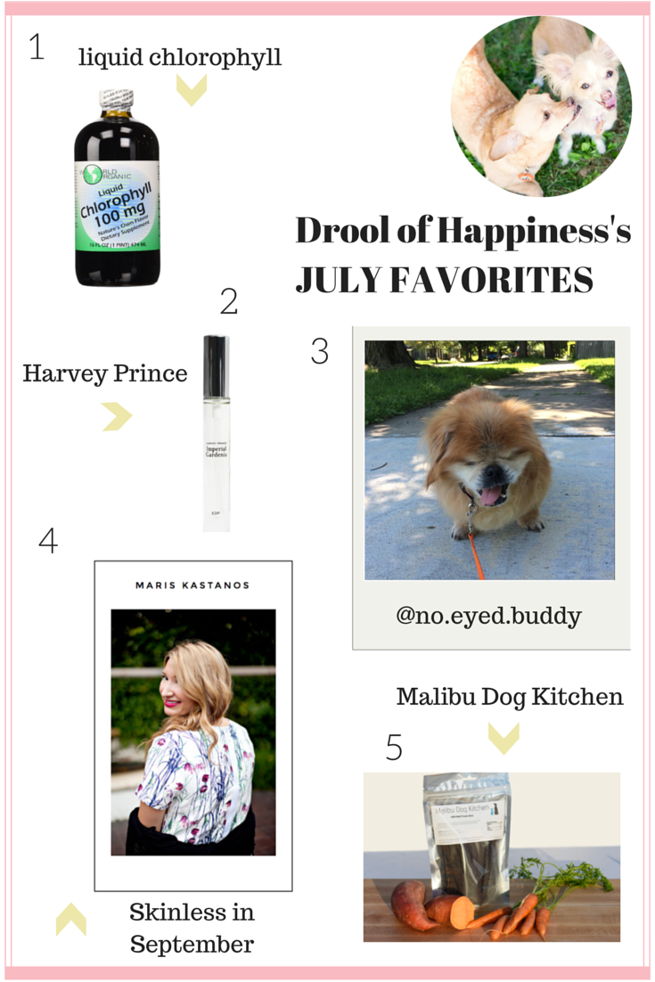 July favorites 2015  by Drool of Happiness - a blog about dogs and a cruelty free lifestyle