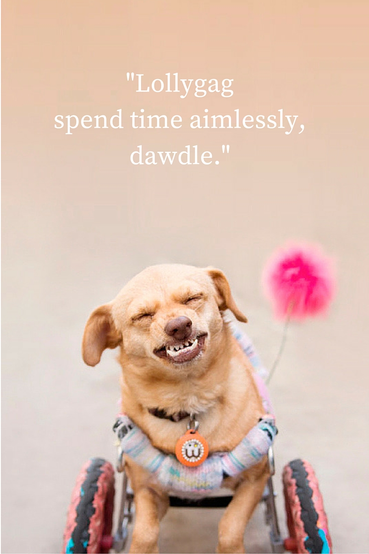 Majestic Monday - quotes brought to you by Daisy Underbite for Monday Motivation. Lallygag - spend time aimlessly, dawdle.""