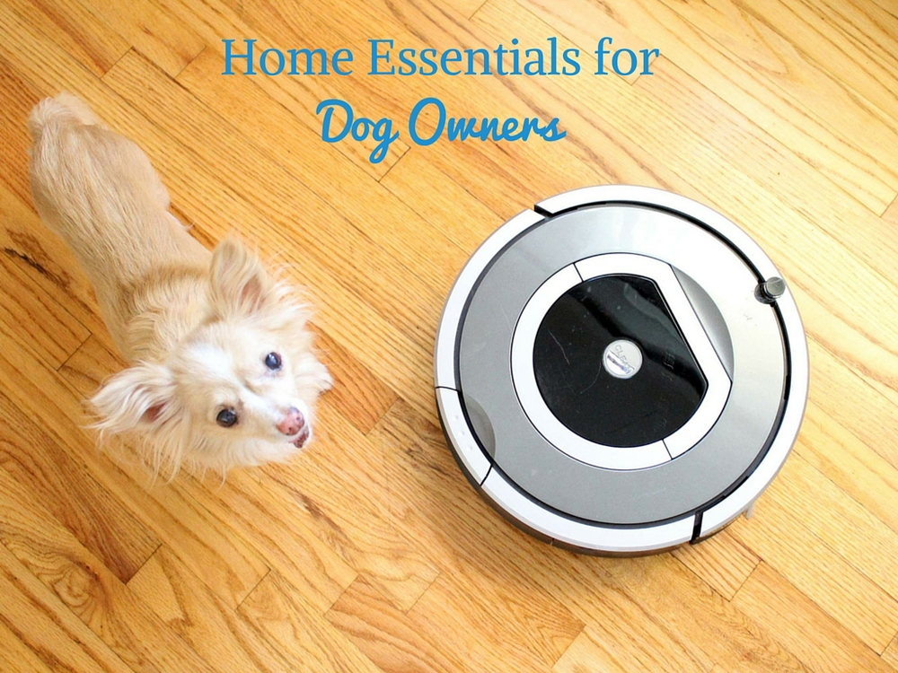 Home essentials for dog owners by Drool of Happiness