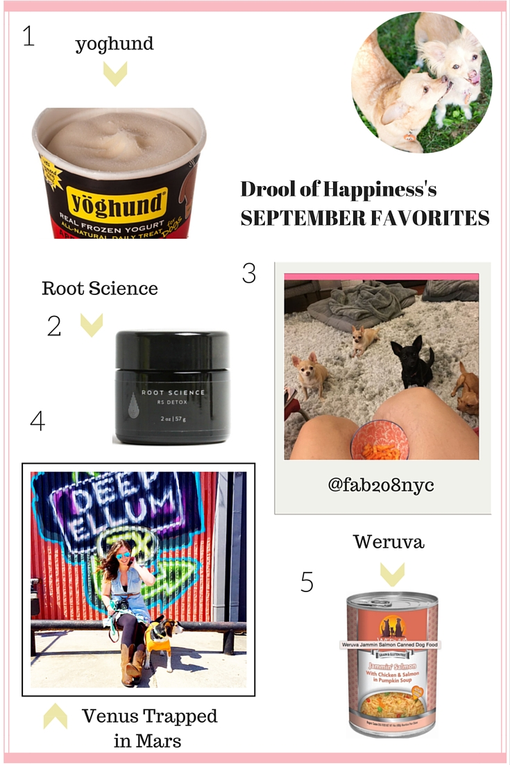 Drool of Happiness's September Favorites 2015