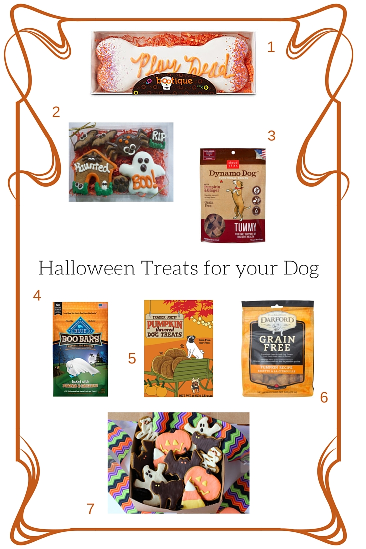 Roundup of Halloween treats for your dog