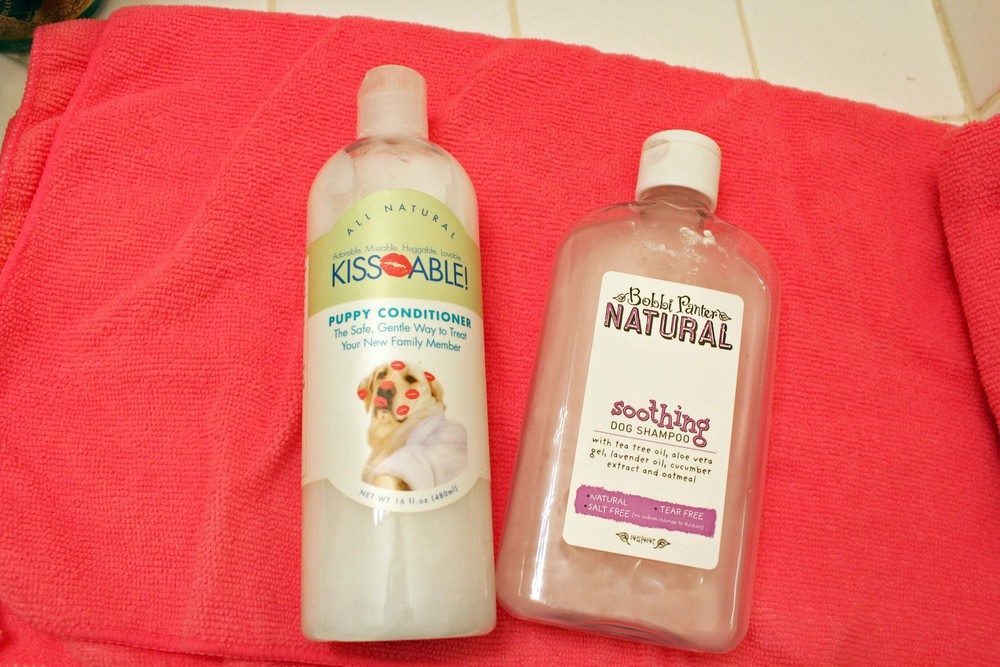 Dog shampoo and conditioner routine