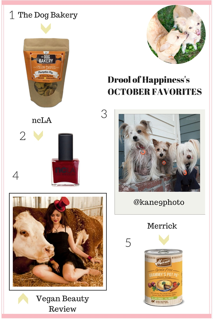 Drool of Happiness October Favorites