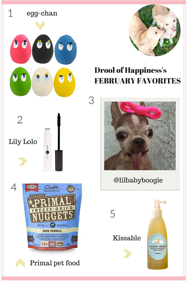 Drool of Happiness's February Favorites 2016