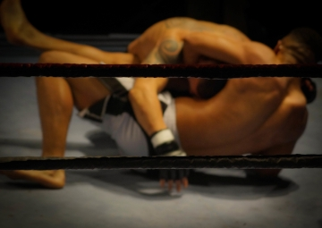 MMA-fighting-free-license-CC01.jpg