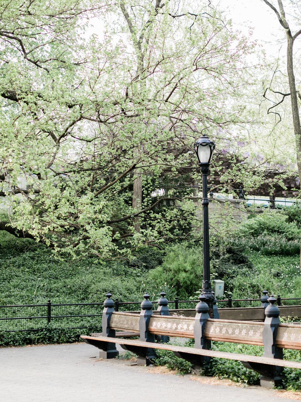 ashergardner-central-park-152.jpg