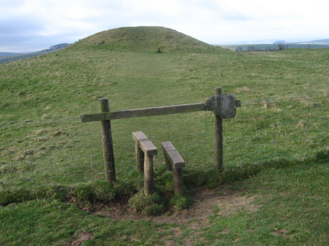 Burial_mound_at_Gibb_Hill_-_geograph.org.uk_-_1216220.jpg