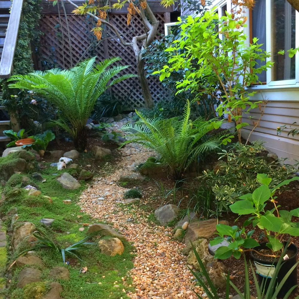 A secret garden corner