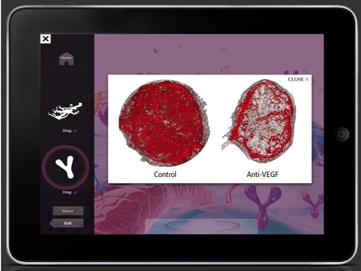 Interactive MOA Environment
