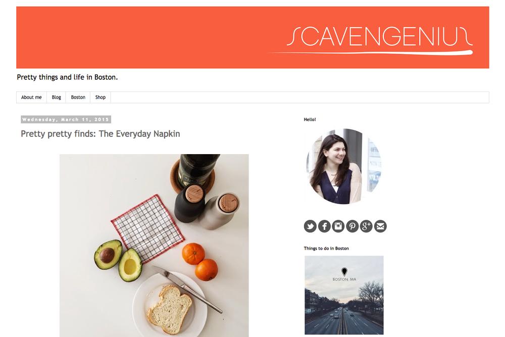 boston-blogger-scavengenius-the-everyday-napkin