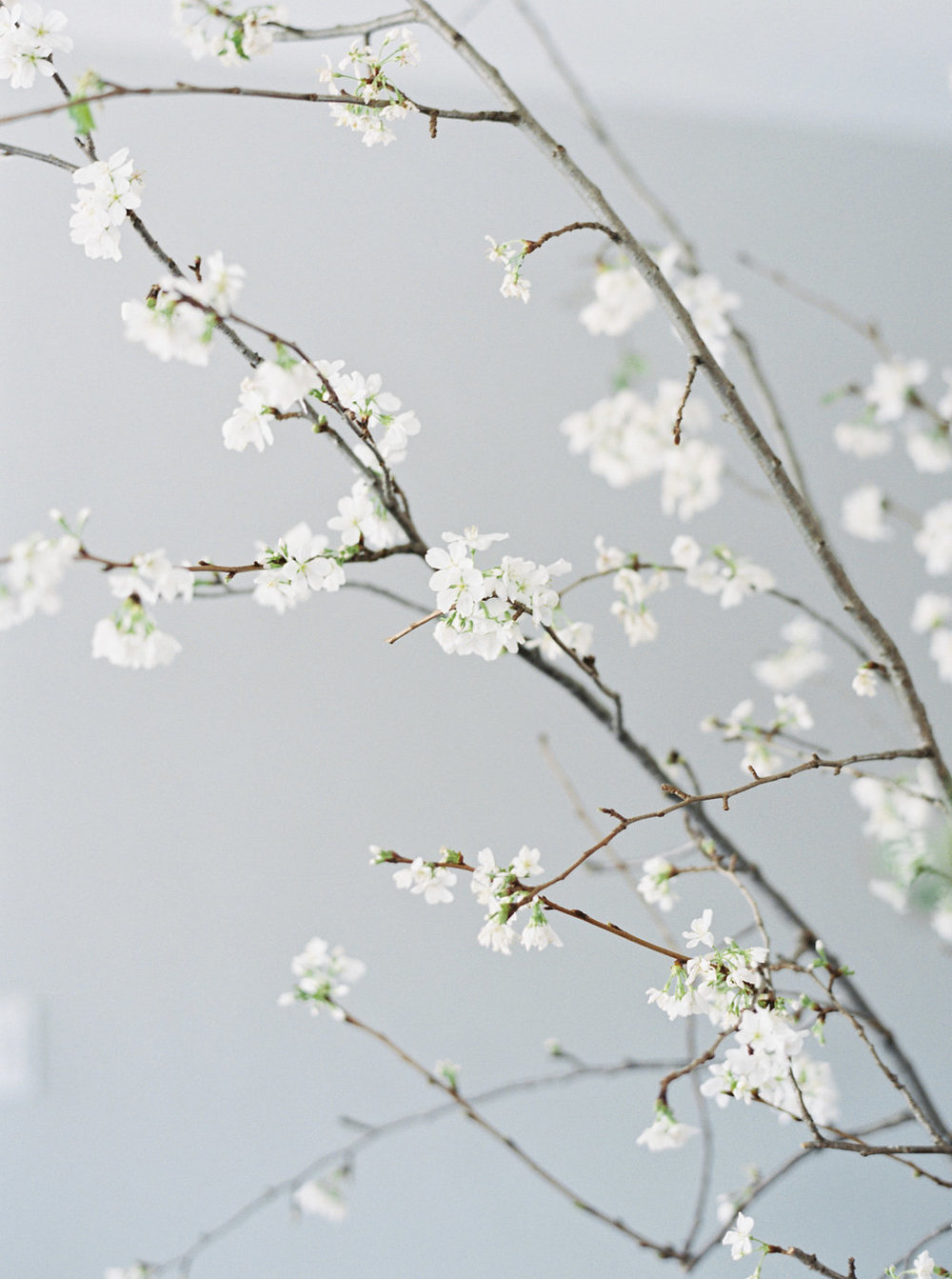 kathryn-yee-baby-shower-japanese-dogwood-inspiration-florals