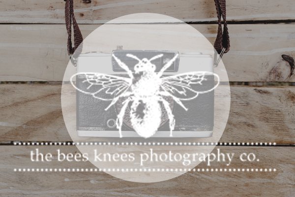 Bees Knees Photography Co.