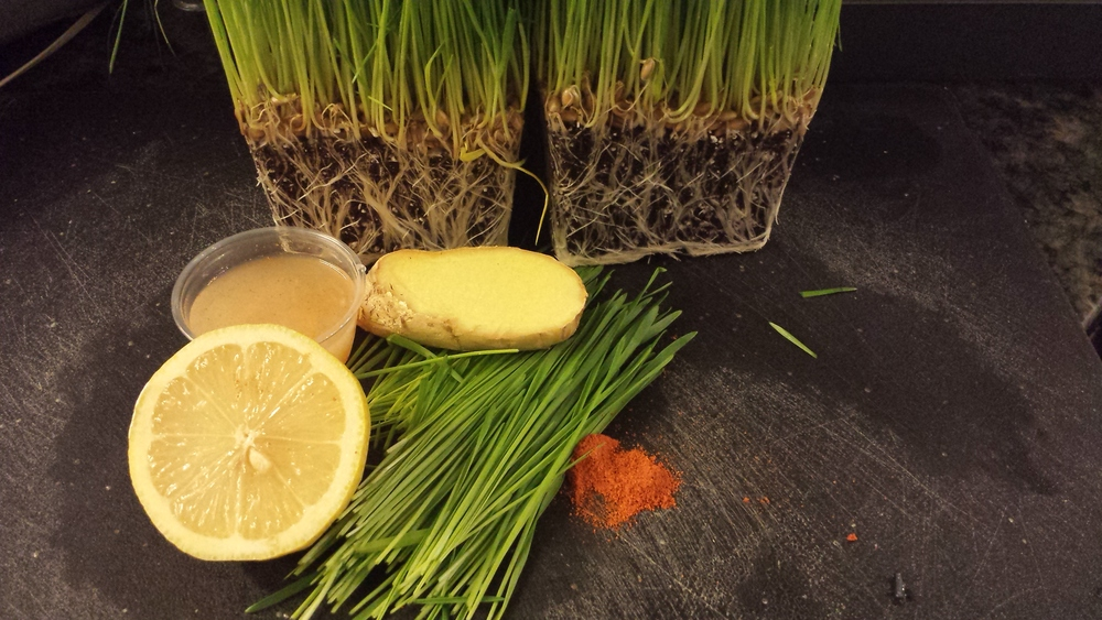 Wheatgrass+Lemon+Ginger+Cayenne= Power Shot
