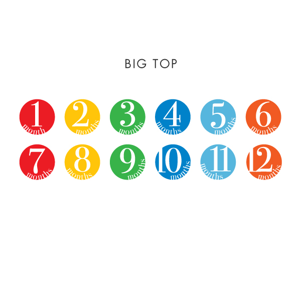 bigtop-sample.jpg