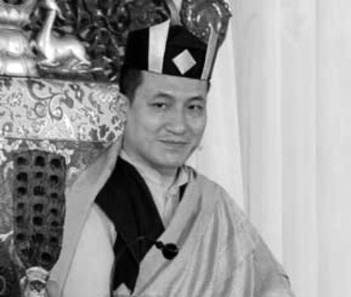 H.H. Karmapa Thinley Thaye Dorje