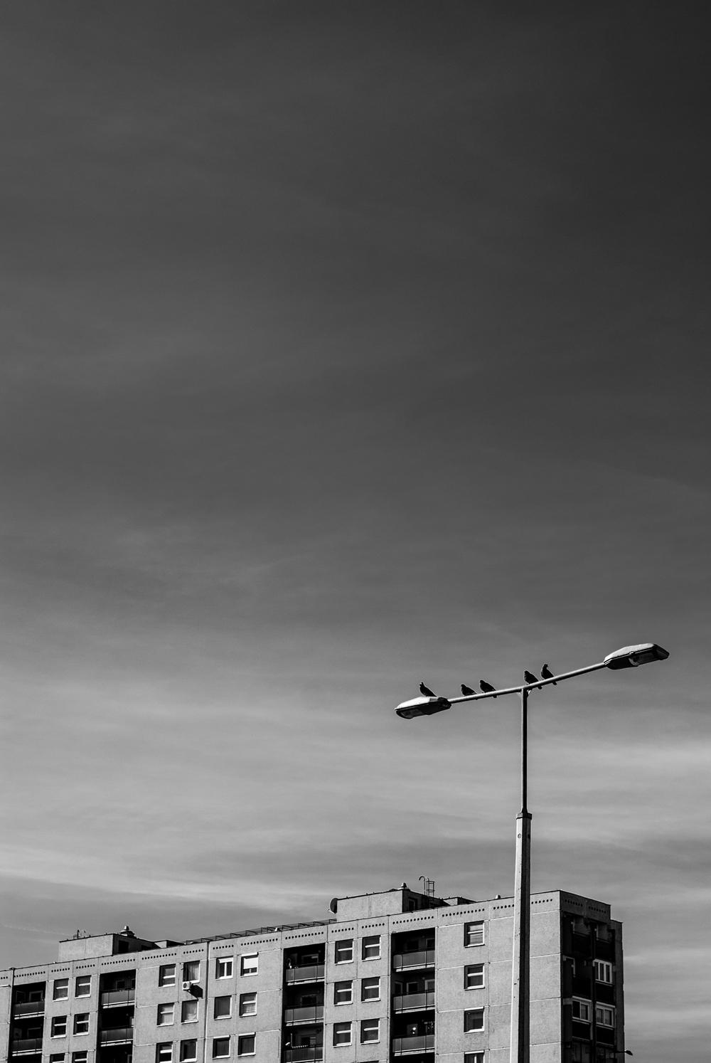 20140215-DSC_0019.jpg