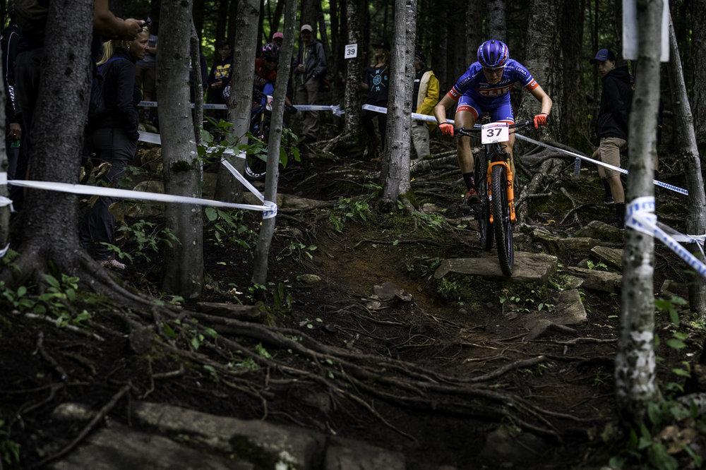 Photo by Matt Delorme. Look at those roots! The trails in MSA are rad.