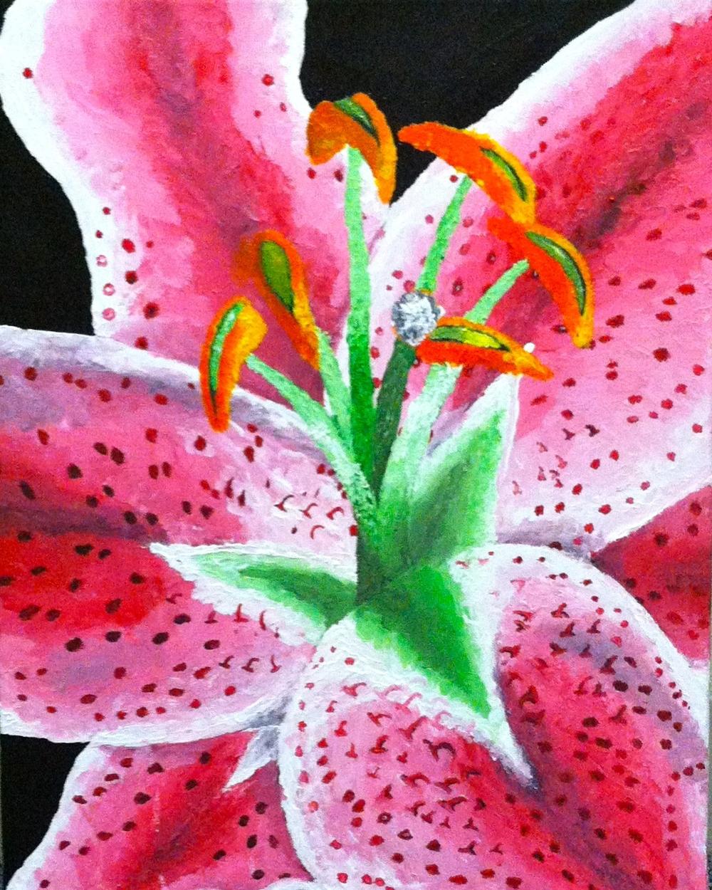 Stargazer Lily 2.jpg
