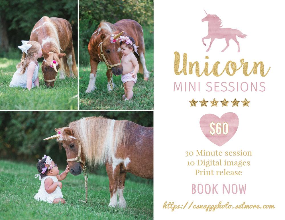Unicorn Mini.jpg
