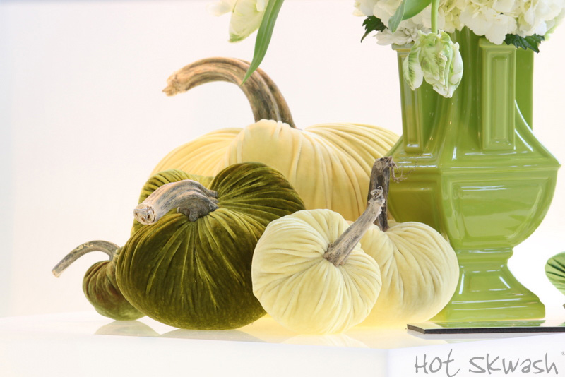 hot skwash_velvet_pumpkins_green yellow saks copy800.jpg