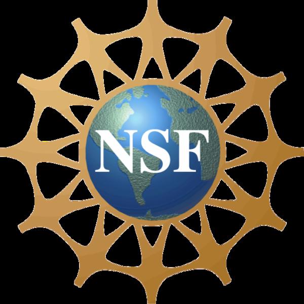 600px-NSF_Logo.PNG