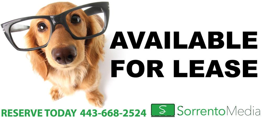 I-See-You-Looking-DOG-GLASSES-2-10.5-x-22.8.jpg