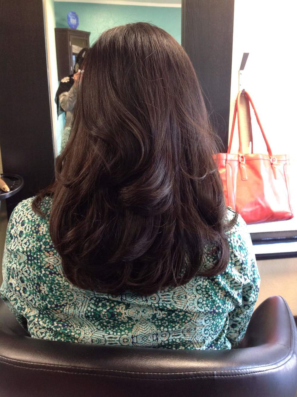 Layered Haircut and Blowdry