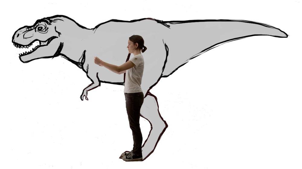 rex_size.jpg