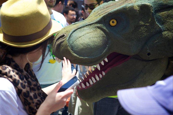 rex_spectator.jpg