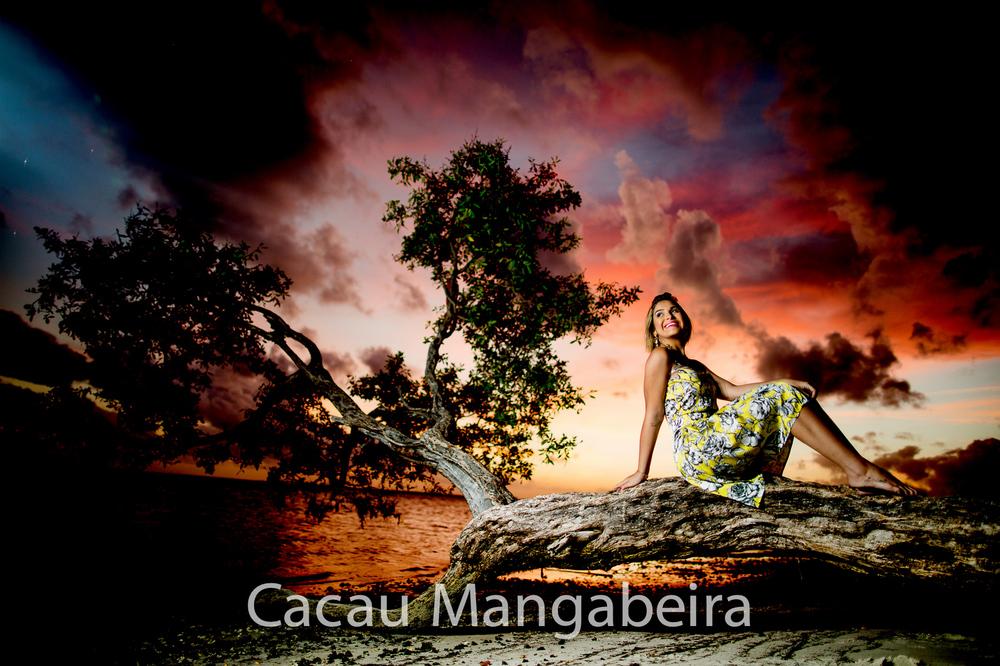 Damylla-cacaumangabeira
