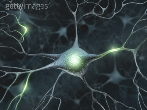 Neuron 5 Getty.jpeg