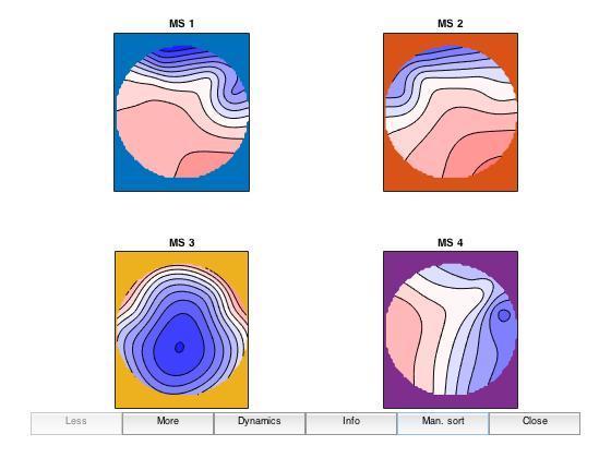 Amy S1 Microstates copy.jpeg