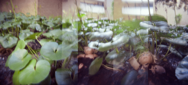 BFranco-HOLGA_Website-10.jpg