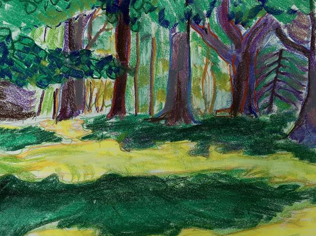 Thank you to everyone who came out last night. And as a token of my gratitude, here's a pastel drawing of trees.  #intheweeds #artistsoninstagram #kunst #art #artgallery #artnews #artwork #color #fineart #onlineart #onlineartgallery #sketch #drawing #realism #drawingfromlife #realism #landscape #muji #sketch #emergingart #emergingartist #pastel #upstateny #catskills