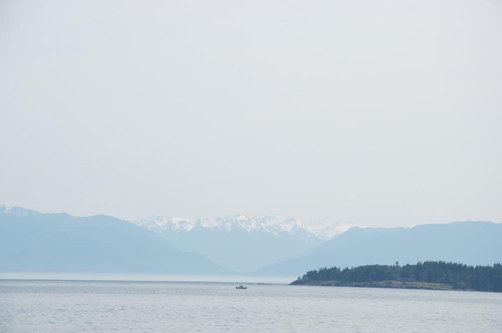 smallswell-esquimalt-lagoon