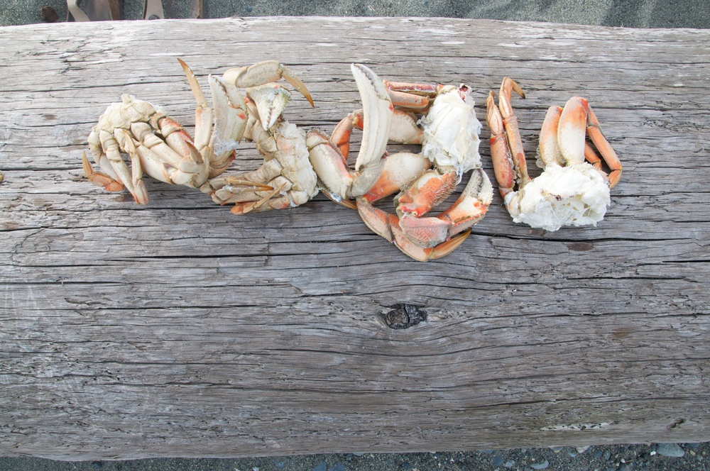 smallswell-dungeness-crab-supper