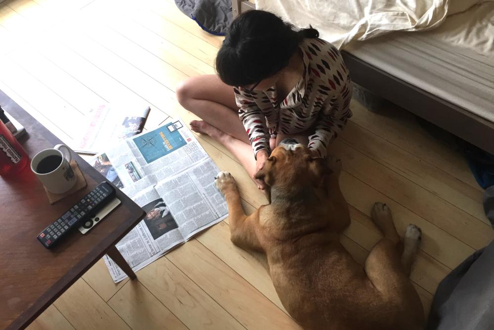 smallswell-smallspace-floor-newspaper-bulldog