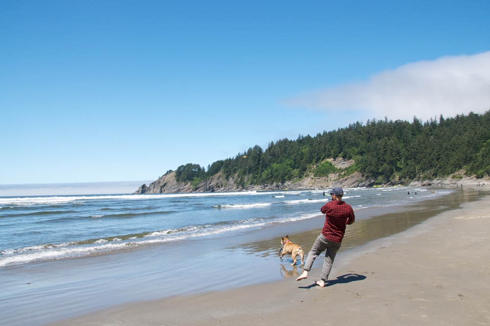 smallswell-oswald-beach-bulldog
