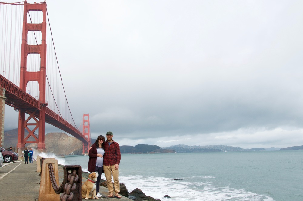 smallswell-california-golden-gate-bridge-bulldog