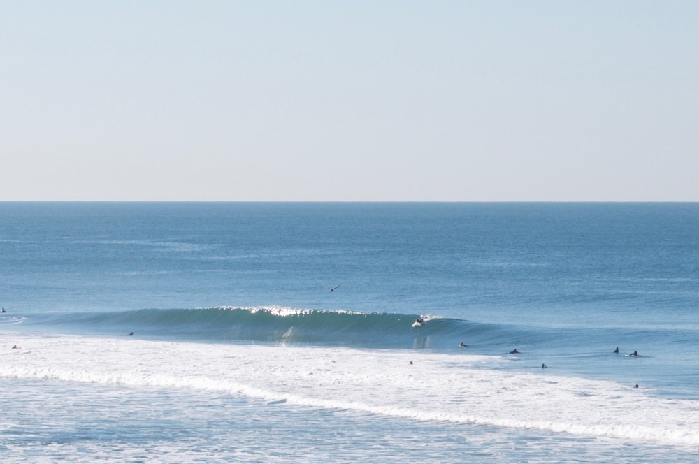 smallswell-agathawagen-california-ocean-beach-surf