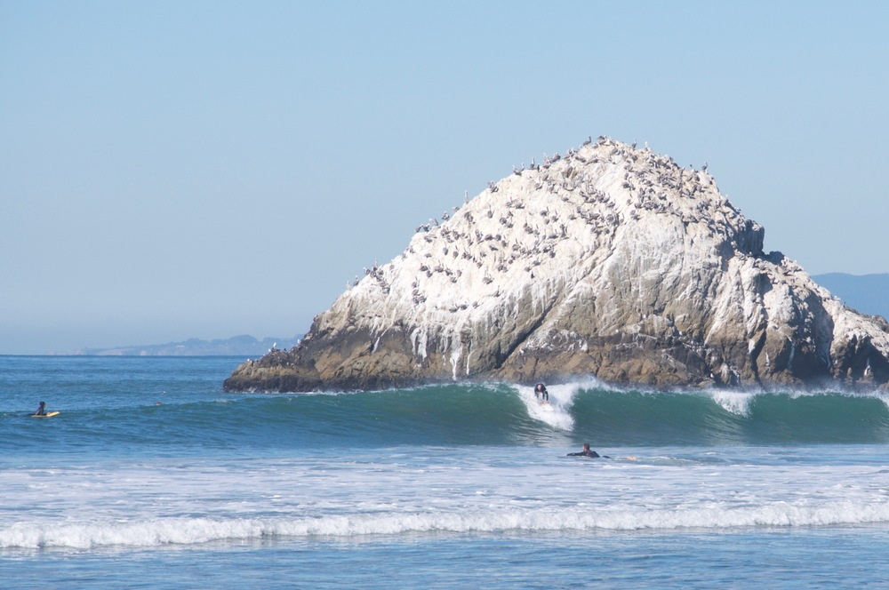 smallswell-agathawagen-california-ocean-beach-surf-wave