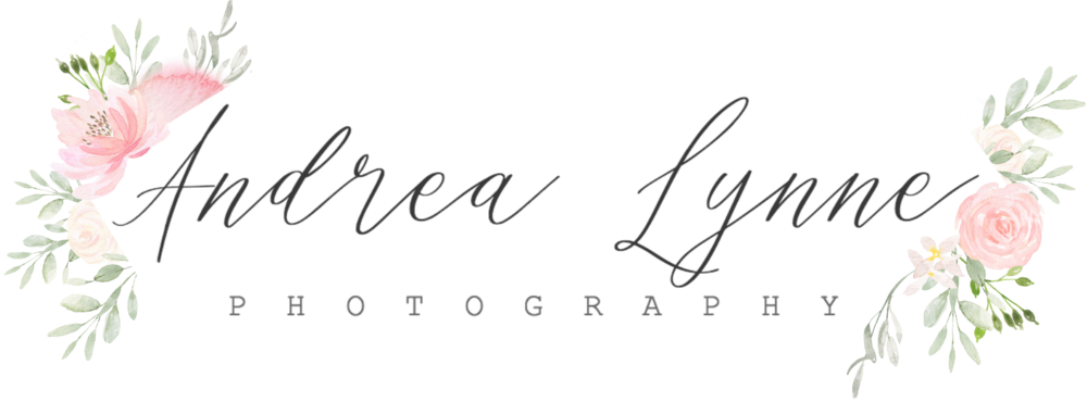 Metro Detroit Photographer - Andrea Lynne Photography
