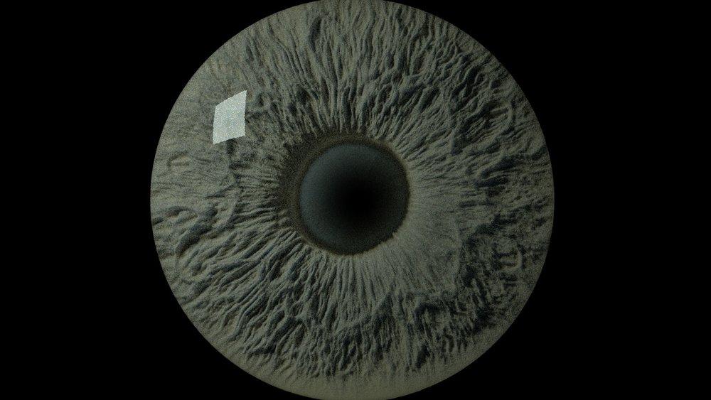 eye 4.jpg