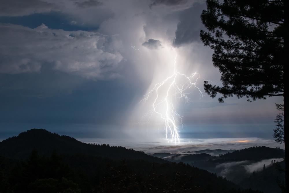 Redwoods, Kalifornien